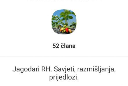 Hrvatski jagodari napokon se udružuju. Malim dijelom je i naš portal zaslužan